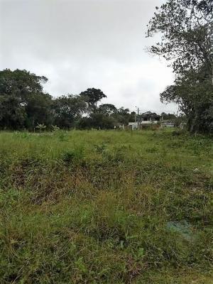 Terreno Escriturado No Gaivota Itanhaém/sp | 4509 Fr
