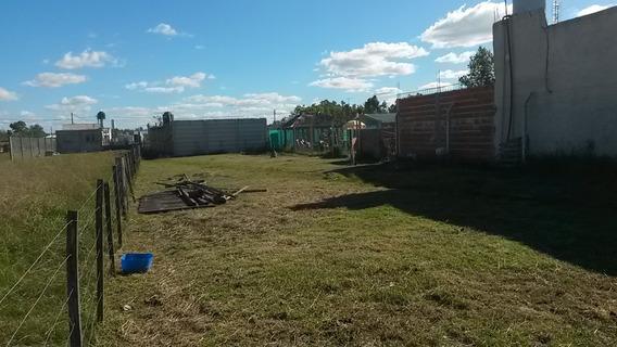 Terreno/lote De 410 M2 Domselaar - San Vicente