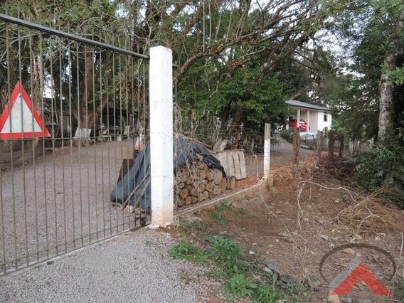 Terreno - Tabatinga - Tijucas Do Sul - Parana - Ref 1123 - 1123 - 4894383