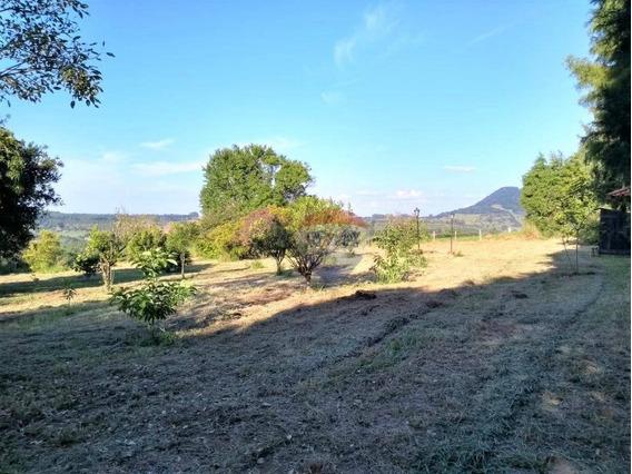 Chácara Com 4 Dormitórios À Venda, 20836 M² Por R$ 330.000 - Zona Rural - Bofete/sp - Ch0014