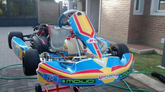 Kart Rotax Dd2 Chasis Tony-fernando Alonso 2016 Solo Hobbie