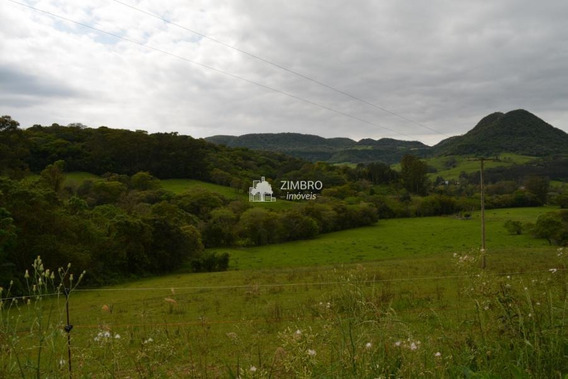 Campo 5 Hectares Em Vale Vêneto - 36802