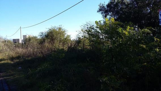 2 Hectáreas A 500 Mts. De La Laguna De Monte.