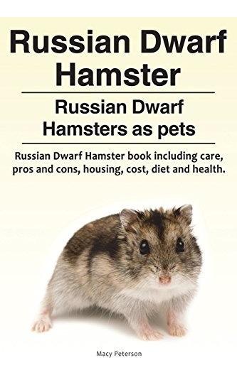 Hámster Enano Ruso Hámster Enano Ruso Como Mascotas Libro