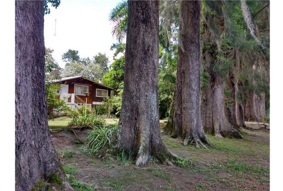 Venta O Permuta De Casa En La Isla (delta)