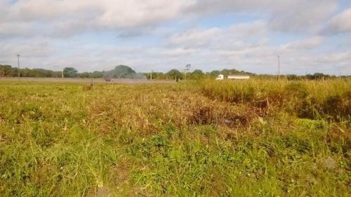 Terreno Em Frente A Rodovia Em Itanhaém-sp
