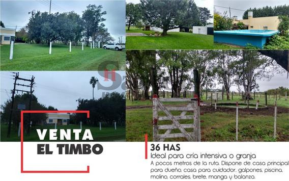 36 Has En Venta, En El Timbo, Santa Fe. Acceso Por Asfalto