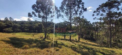 Imagem 1 de 9 de Chácara Com 1 Dormitório À Venda, 400 M² Por R$ 70.000,00 - Zona Rural - São Luiz Do Paraitinga/sp - Ch0265