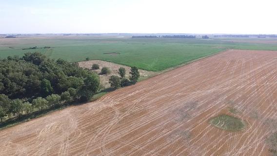 Campo 300 Has - Sobre Ruta 41 - 80 % Agrícola