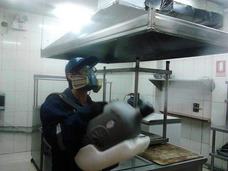 Fumigacion De Cucarachas, Moscas, Pulgas, Garrapatas Y Ratas