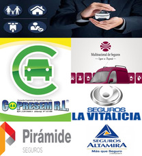 Asesor Productor Polizas De Seguros Auto-rcv Todos Los Ramos