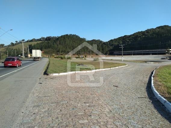 Terreno Grande Para Transportadoras, Posto De Gasolina, Restaurantes! - 333 - 34310596