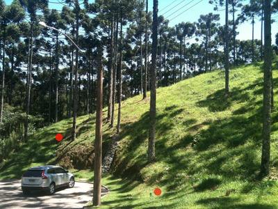 Terreno Residencial À Venda, Condomínio Aspen Mountain, Gramado - Te0040. - Te0040