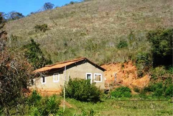 Sítio A Venda No Bairro Da Onça Em Alagoa - Mg. - St110-1