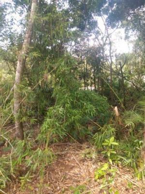 Terreno Medindo 181 M2 Em Itanhaém - Entrada Mais Parcelas