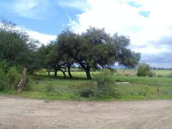 M&c Venta Hectáreas En Salto De Los Salado Al Sur En Aguascalientes