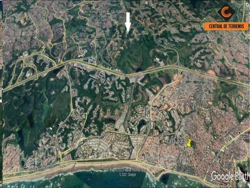 Imagem 1 de 15 de Terreno Próximo Ao Bosque Da Paz - Te00443 - 69487473