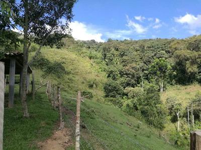 Finca En Venta 7 Hectáreas San Rafael Antioquia