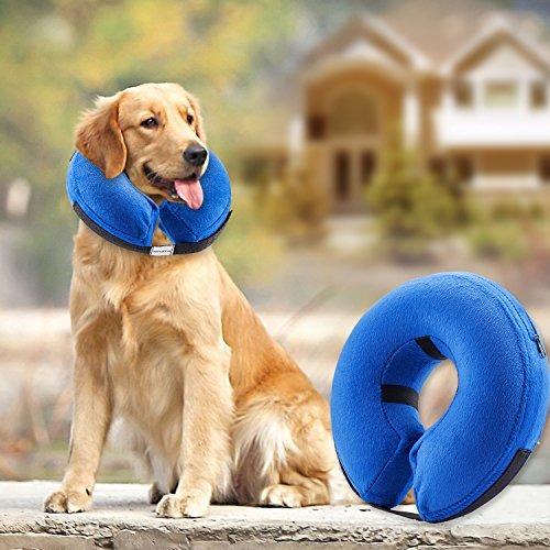 Cuello Inflable Protector Para Perros Y Gatos: El Collar De