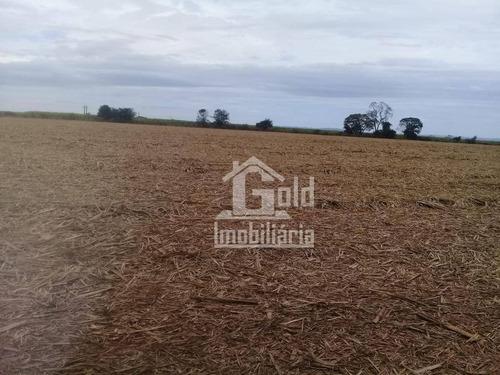Imagem 1 de 1 de Fazenda À Venda, 76 Alqueires Sendo 50 Em Cana Por R$ 9.000.000 - Zona Rural - Araraquara/sp - Fa0139