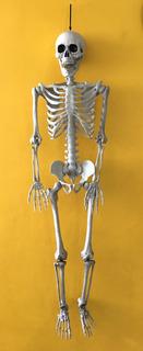 Enfeite Do Terror Esqueleto 95cm - Decoração Halloween Bruxa
