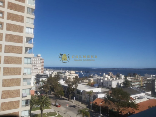 Venta Apartamento De 1 Dormitorio  En Peninsula- Ref: 4224
