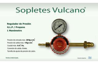 Bowtique VRFloral Estampado natural cinta 5m X 15mm