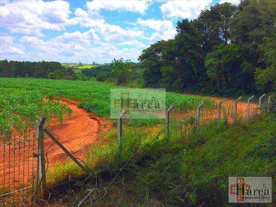 Sítio: Jd Avenida - Capela Do Alto - V12808