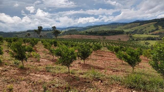 Terreno / Área Para Comprar No Zona Rural Em Belo Vale/mg - 1631