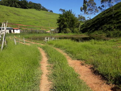 Sítio 10 Alqueires Na Região Do Vale Do Paraíba Sp Leia