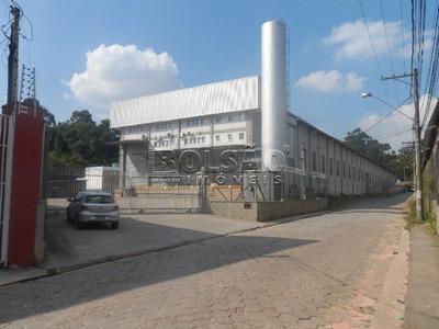 Galpao - Jardim Colibri - Ref: 22264 - L-22264