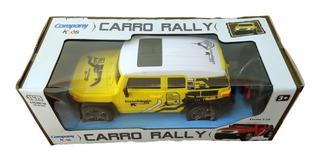 Caminhonete Carrinho Controle Remoto Sem Fio Rally