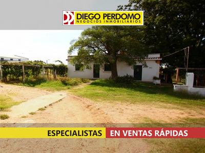 Montevideo. Especial Chacra En La Colorada