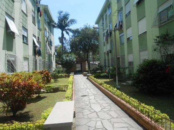 Apartamento - Vila Nova - Ref: 397375 - V-cs36006279