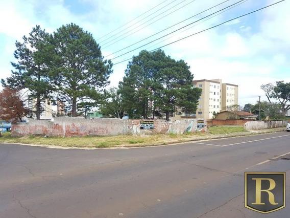 Terreno Para Venda Em Guarapuava, Santana - _2-719501