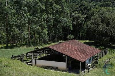 Fazenda Rural Para Venda, Bom Sucesso, São J Dos Campos - Fa0001. - Fa0001