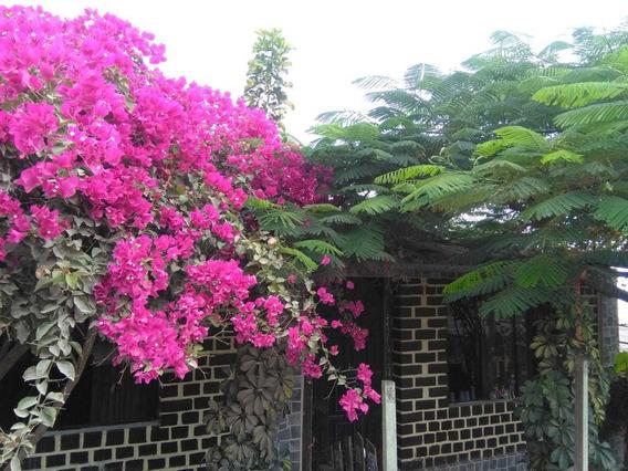 Se Vende Casa En Pachacutec-ventanilla