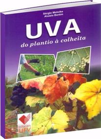 Uva - Do Plantio À Colheita