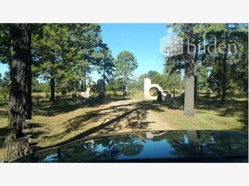 Imagen 1 de 6 de Terreno En Venta Rancho El Oso