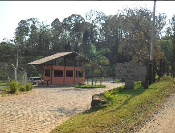 Terreno Residencial À Venda, Joaquim Egídio, Campinas. - Te0511
