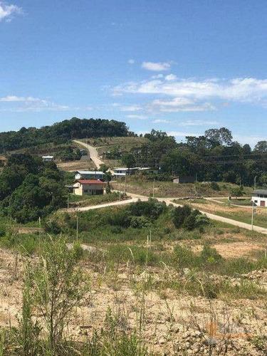Terreno À Venda, 435 M² Por R$ 225.000 - Mariland - Caxias Do Sul/rs - Te0251