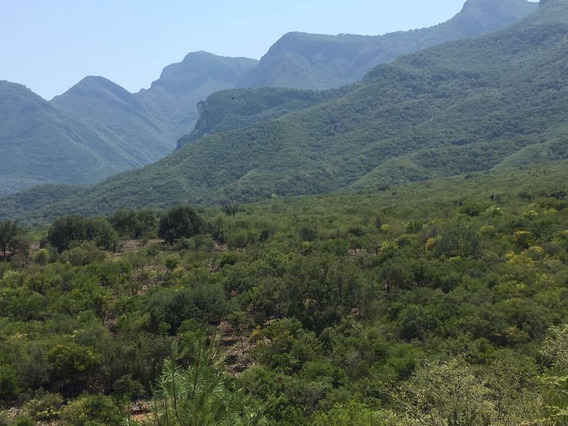 Terreno Venta En El Barrial, Carretera Nacional.