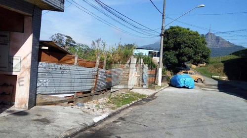 Terreno Residencial À Venda, Jardim Ipanema (zona Oeste), São Paulo. - Te0043