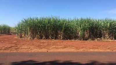 Fazenda Para Venda Em Pirassununga - Faz 01