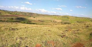 Fazenda A Venda No Bairro Bela Vista Do Paraiso Em Londrina - 300-1