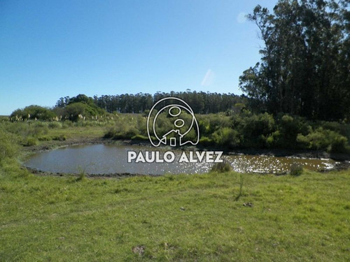 Imagen 1 de 22 de Chacras-venta-cerros-azules-ch064