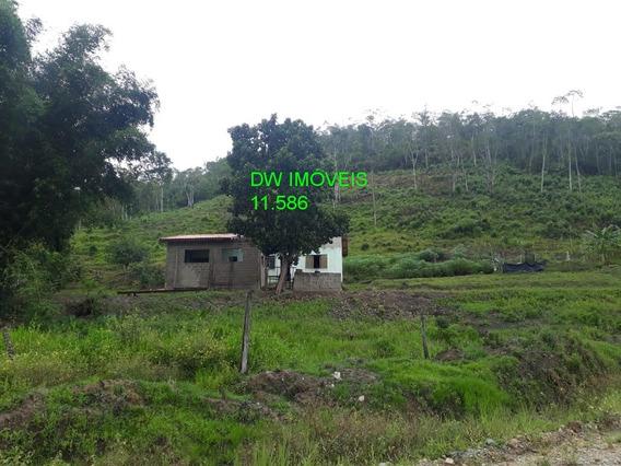 7 Barras/10 Alq /sitio Para Plantio / Gado / Bufalo - 04839 - 34121253