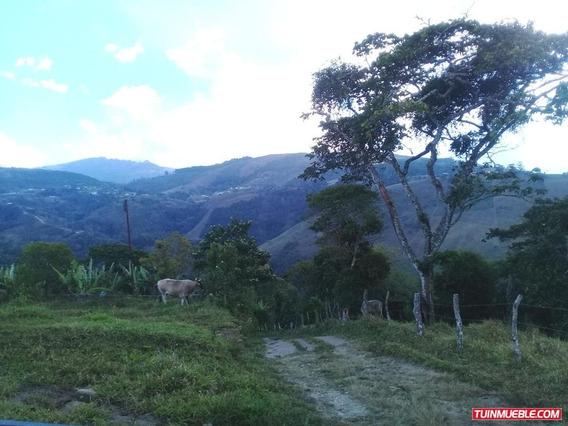 Finca En Monte Carmelo De Cordero