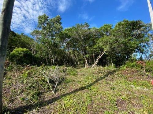 Imagem 1 de 6 de Terreno Na Praia Com 280 M². Itanhaém-sp | 7696-pc