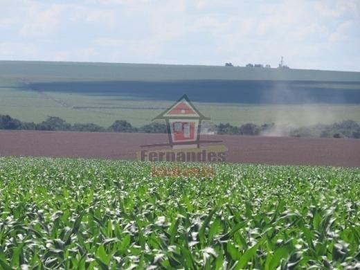 Fazenda À Venda, 2.100 Há Por R$ 131.800.000,00 - Dourados/ms - Fa0141